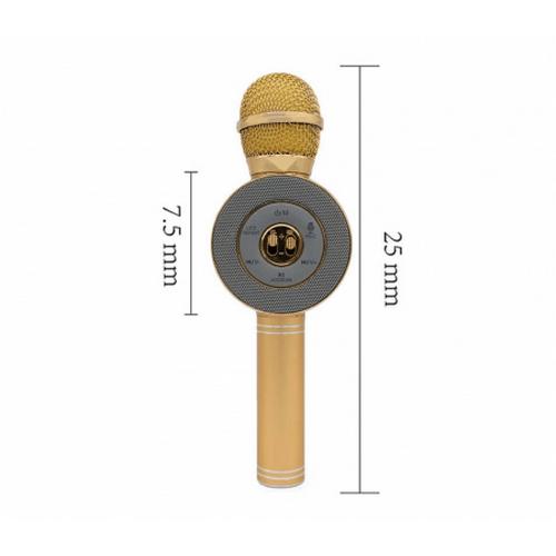 Беспроводной караоке микрофон WS 668 оптом